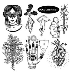 occultism set with woman with moth eyes mandrake vector image