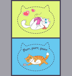 set pretty banners with playing funny cats vector image