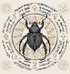 Banner with hand drawn beetle and magic symbols vector