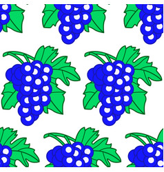 blue grapes pattern vector image