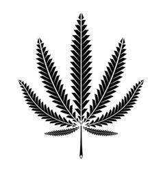 cannabis marijuana leaf vector image
