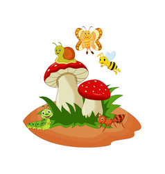 cartoon funny insects with mushroom vector image