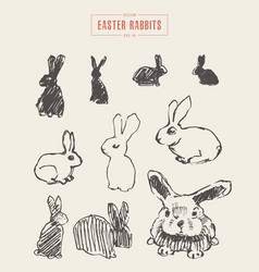 Collection realistic rabbits drawn sketch vector