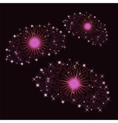 Set of Pink Fireworks vector image