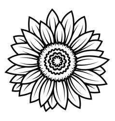 Sunflower flower black and white of vector