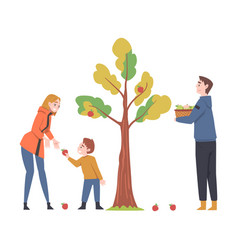 Young man and woman with their kid picking apples vector