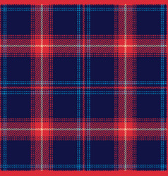 blue red plaid pattern vector image