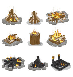 Burning campfire logs collection isolated on white vector