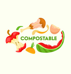 compostable vegetable fruit and meat kitchen vector image