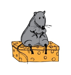 Cute fat cartoon rat on a piece of cheese vector image