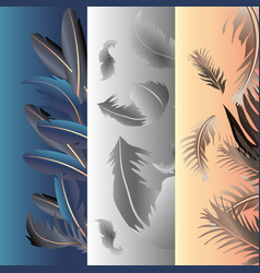 Feathers fluffy softness decoration banners design vector