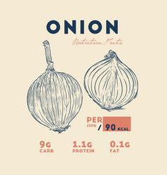 health benefits of onion vector image