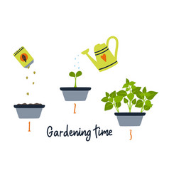 line sprout and plant growing gardening vector image