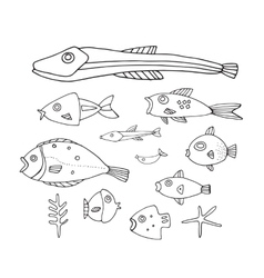 Lovely hand drawn fish collection vector image