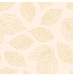 Seamless pattern with hand drawn rose leafs vector image