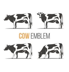 Set of a stylish spotted holstein cows vector