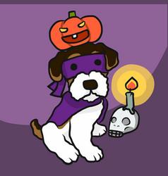 terrier dog halloween pumpkin and skull candle vector image