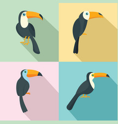 toucan parrot bird icons set flat style vector image