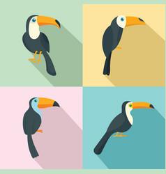 Toucan parrot bird icons set flat style vector