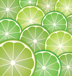Pattern limes slices vector image vector image