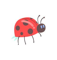 cute cartoon red ladybug character vector image vector image