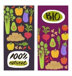 Natural vegetable vertical flyers set vector image vector image