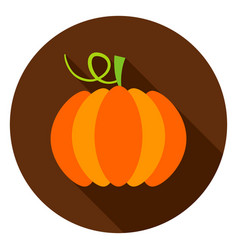pumpkin circle icon vector image vector image