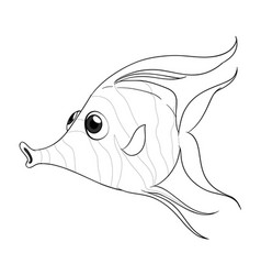 animal outline for fish vector image