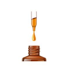 herbal oil pipette skin care bottle closeup vector image
