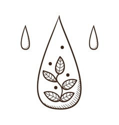 Water drop with leaves within vector