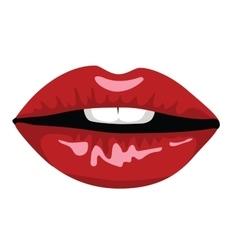 Woman lips vector