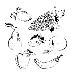 Set of different hand drawn vector image vector image
