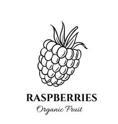 Hand drawn raspberries icon vector