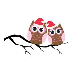 owls christmas vector image