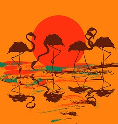 with flock of flamingos at sunset or sunrise vector image