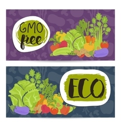 Eco farm food horizontal flyers set vector image