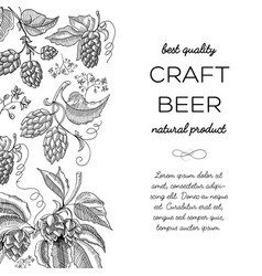 Black and white colored hop doodle vector
