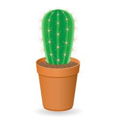 cactus 02 vector image