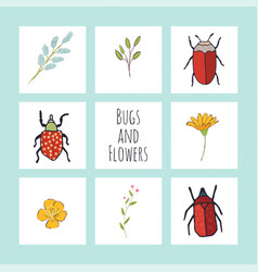 Cards with flowers greenery and cute bugs vector