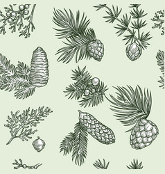 Pine branches of trees and cones seamless pattern vector