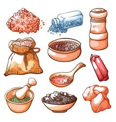 salt hand drawn set cooking natural ingredient vector image
