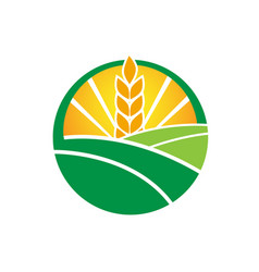 wheat farm agruculture farm logo design vector image