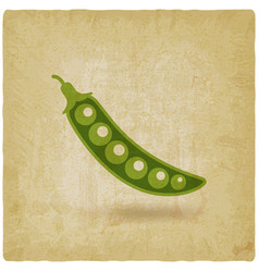 Green pea pod old background vector