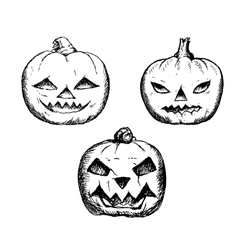 Halloween symbols pumpkin set vector
