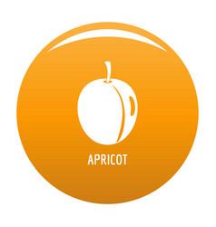Apricot icon orange vector