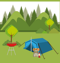 camping zone with tent scene vector image