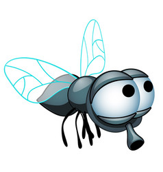 Cartoon fly with big eyes isolated on a white vector