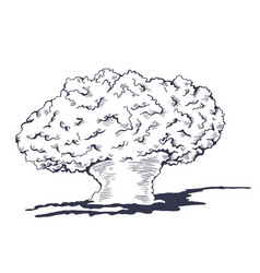 Mushroom cloud from the atomic bombing vector
