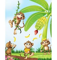 Playful monkeys near the banana plant vector