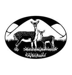 Roe deer deer fallow deer - wildlife wildlife vector